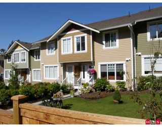 "Photo 1: 10 6110 138TH Street in Surrey: Sullivan Station Townhouse for sale in ""SENECA WOODS"" : MLS®# F2906384"