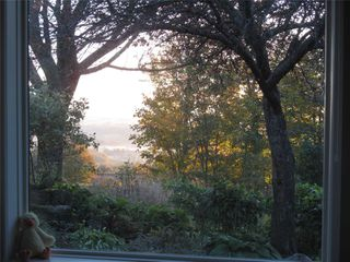 Photo 5: 798475 3rd Line in Mulmur: Rural Mulmur House (Bungalow) for sale : MLS®# X4806669