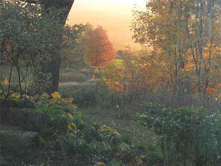 Photo 39: 798475 3rd Line in Mulmur: Rural Mulmur House (Bungalow) for sale : MLS®# X4806669