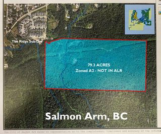 Photo 3: 2550 Southwest 10 Street in Salmon Arm: Foothill SW Vacant Land for sale : MLS®# 10209597
