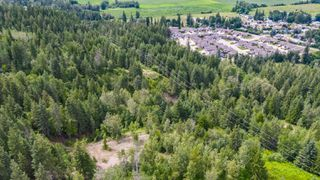 Photo 17: 2550 Southwest 10 Street in Salmon Arm: Foothill SW Vacant Land for sale : MLS®# 10209597