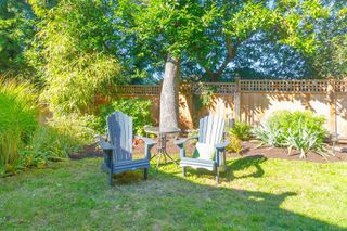 Photo 26: 3953 Margot Pl in : SE Maplewood House for sale (Saanich East)  : MLS®# 856689