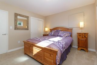 Photo 19: 3953 Margot Pl in : SE Maplewood House for sale (Saanich East)  : MLS®# 856689