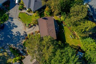 Photo 23: 3953 Margot Pl in : SE Maplewood House for sale (Saanich East)  : MLS®# 856689