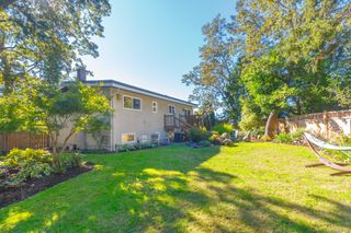 Photo 30: 3953 Margot Pl in : SE Maplewood House for sale (Saanich East)  : MLS®# 856689