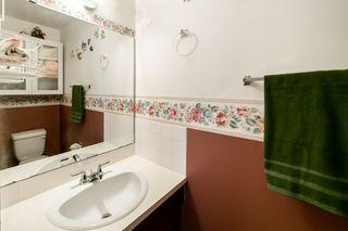 Photo 19: 8 GREENBRIER Crescent: St. Albert House for sale : MLS®# E4195805