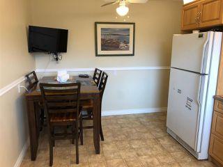 Photo 11: 12219 147 Avenue in Edmonton: Zone 27 House for sale : MLS®# E4196905