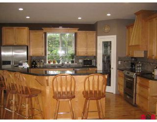 Photo 4: 6438 SUMAS PRAIRIE Road in Sardis: Greendale Chilliwack House for sale : MLS®# H2803514
