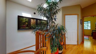 Photo 8: 5534 120 Street in Surrey: Panorama Ridge House for sale : MLS®# R2494689