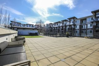 Photo 30: 213 6688 120 Street in Surrey: West Newton Condo for sale : MLS®# R2496752