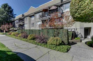 "Photo 16: 303 555 W 14TH Avenue in Vancouver: Fairview VW Condo for sale in ""Cambridge Place"" (Vancouver West)  : MLS®# R2503977"