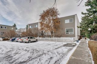 Photo 14: 116 6919 Elbow Drive SW in Calgary: Kelvin Grove Apartment for sale : MLS®# A1050875