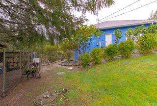 Photo 10: 12169 287 Street in Maple Ridge: Northeast House for sale : MLS®# R2526015