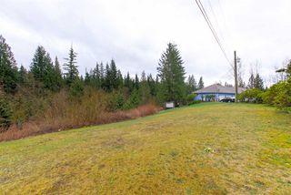 Photo 13: 12169 287 Street in Maple Ridge: Northeast House for sale : MLS®# R2526015