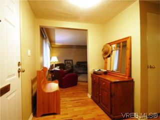 Photo 5: 3810 Merriman Dr in VICTORIA: SE Cedar Hill Single Family Detached for sale (Saanich East)  : MLS®# 520966