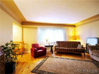 Photo 3: 3810 Merriman Dr in VICTORIA: SE Cedar Hill Single Family Detached for sale (Saanich East)  : MLS®# 520966