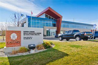 Photo 33: 133 SAVANNA ST NE in Calgary: Saddle Ridge House for sale : MLS®# C4301343
