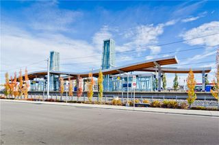 Photo 39: 133 SAVANNA ST NE in Calgary: Saddle Ridge House for sale : MLS®# C4301343