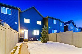 Photo 28: 133 SAVANNA ST NE in Calgary: Saddle Ridge House for sale : MLS®# C4301343