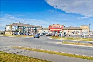Photo 32: 133 SAVANNA ST NE in Calgary: Saddle Ridge House for sale : MLS®# C4301343