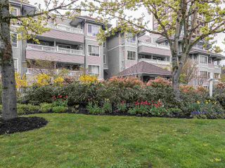 Photo 19: 404 6745 STATION HILL COURT in Burnaby: South Slope Condo for sale (Burnaby South)  : MLS®# R2445660