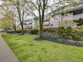 Photo 18: 404 6745 STATION HILL COURT in Burnaby: South Slope Condo for sale (Burnaby South)  : MLS®# R2445660