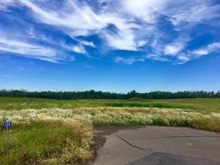 Photo 1: 140 50428 Range Road 234: Rural Leduc County Rural Land/Vacant Lot for sale : MLS®# E4208602