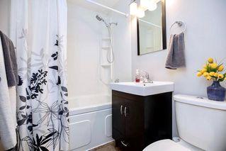 Photo 7: 202 Portland Avenue in Winnipeg: St Vital Residential for sale (2D)  : MLS®# 202018055
