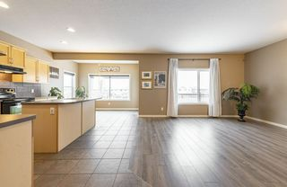 Photo 16: 1250 MCALLISTER Way in Edmonton: Zone 55 House for sale : MLS®# E4221316