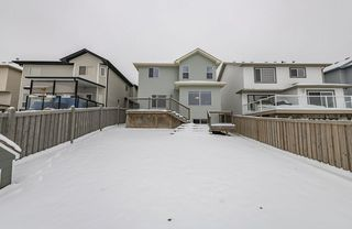 Photo 44: 1250 MCALLISTER Way in Edmonton: Zone 55 House for sale : MLS®# E4221316