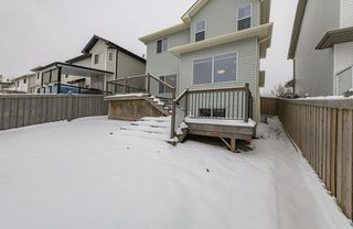 Photo 43: 1250 MCALLISTER Way in Edmonton: Zone 55 House for sale : MLS®# E4221316