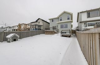 Photo 45: 1250 MCALLISTER Way in Edmonton: Zone 55 House for sale : MLS®# E4221316
