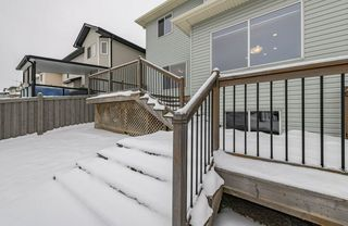 Photo 41: 1250 MCALLISTER Way in Edmonton: Zone 55 House for sale : MLS®# E4221316