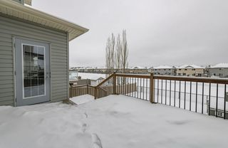 Photo 42: 1250 MCALLISTER Way in Edmonton: Zone 55 House for sale : MLS®# E4221316