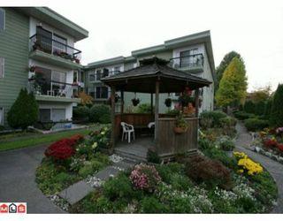 """Photo 10: 331A 8635 120TH Street in Delta: Annieville Condo for sale in """"DELTA CEDARS"""" (N. Delta)  : MLS®# F1002122"""