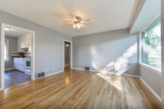 Photo 6: 11832 61 Street in Edmonton: Zone 06 House for sale : MLS®# E4172675