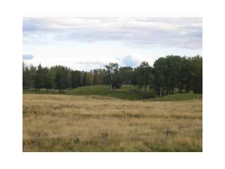Main Photo: LOT #6 River Ridge Estates: Rural Wetaskiwin County Rural Land/Vacant Lot for sale : MLS®# E4191661