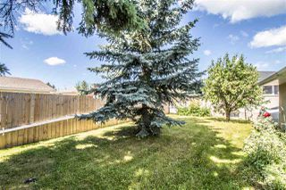 Photo 22: 11019 165 Avenue in Edmonton: Zone 27 House for sale : MLS®# E4206904