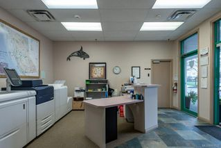 Photo 5: 1275 Cypress St in : CR Campbell River Central Office for lease (Campbell River)  : MLS®# 861620