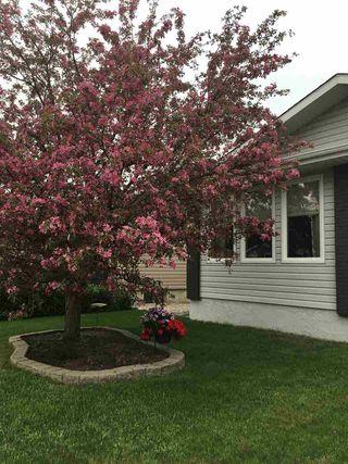 Photo 26: 39 UMBACH Road: Stony Plain House for sale : MLS®# E4187846