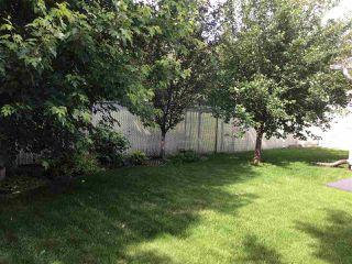 Photo 31: 39 UMBACH Road: Stony Plain House for sale : MLS®# E4187846