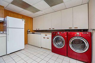 Photo 47: 29 BELMONT Drive: St. Albert House for sale : MLS®# E4192453