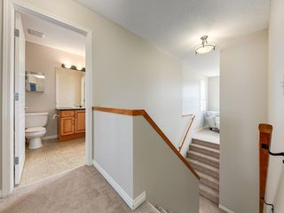 Photo 27: 976 COPPERFIELD Boulevard SE in Calgary: Copperfield Detached for sale : MLS®# C4303066