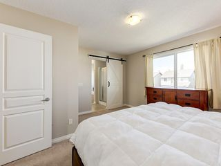 Photo 29: 976 COPPERFIELD Boulevard SE in Calgary: Copperfield Detached for sale : MLS®# C4303066