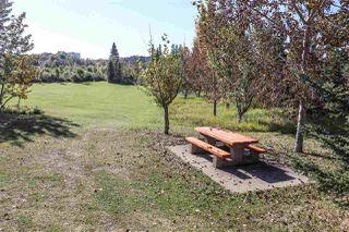 Photo 39: 410 Blackburne Drive E in Edmonton: Zone 55 House for sale : MLS®# E4214297