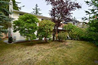 Photo 5: 14545 16 Avenue in Surrey: Sunnyside Park Surrey House for sale (South Surrey White Rock)  : MLS®# R2405150