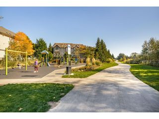 """Photo 18: 163 6747 203 Street in Langley: Willoughby Heights Townhouse for sale in """"SAGEBROOK"""" : MLS®# R2412939"""