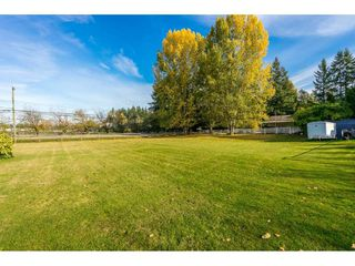 "Photo 18: 4772 238 Street in Langley: Salmon River House for sale in ""Salmon River"" : MLS®# R2417126"