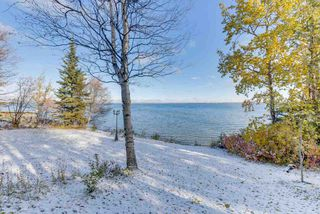 Photo 31: 90 Crystal Springs Drive: Rural Wetaskiwin County House for sale : MLS®# E4179028