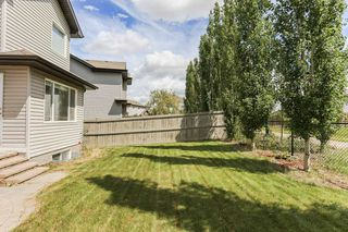 Photo 3: 11445 14A Avenue in Edmonton: Zone 55 House for sale : MLS®# E4180230
